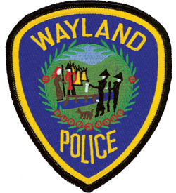 Wayland pd patch_call_02